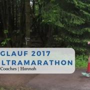 Racebericht, Tipps für Rennsteiglauf, Tipps für Ultramarathon-Rookies